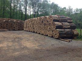 Holz - Kaminholz Brennholz Feuerholz