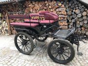 Wagonette Kutsche Trainingswagen Ein Zweispännig