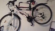 Fahrrad ZED CX K2 Cross -