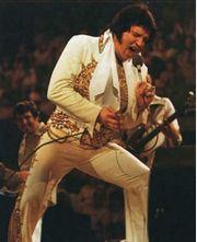 Elvis in Concert letzte Konzert