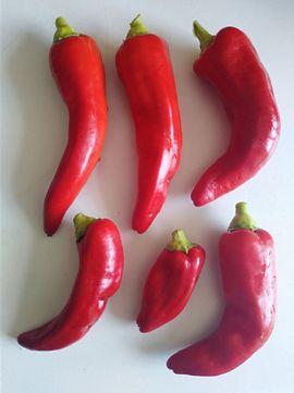 Samen Paprika rot Chili De: Kleinanzeigen aus Hamburg Langenhorn - Rubrik Pflanzen
