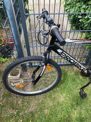 Gebrauchtes Mountain Bike Junge Herren