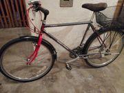 Fahrrad Koga Miyata Terra Runner