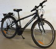 Fahrrad Falter FX 421 24