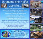 Tierschutzverein Pro Vita Animale e
