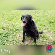 Larry - Noch etwas stürmisch in