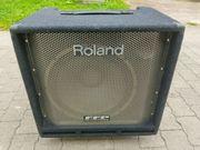 ROLAND DB - 700 BASS - COMBO