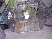 TOP Zustand Vogelkäfig Käfig mit