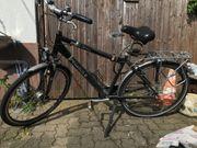 Herren-Trekking Fahrrad Pegasus Strong