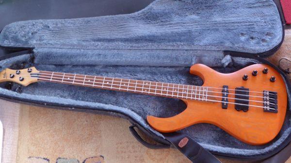 Esh Various E-Bass seltenes top-Modell