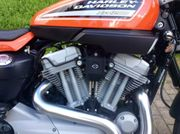 2009 Harley-Davidson XR1200 XR1 Wilber