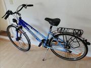 Np 699 Pegasus Solero Trekkingbike