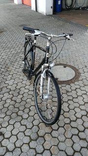 Herren - Trekkingrad