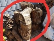 Brennholz Pappel