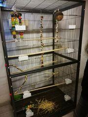 Vogelkäfig XL Vogelheim Voliere