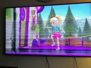 Samsung TV Defekt
