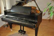 Klavier - Flügel