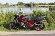 Kultbike Honda CB-1 in Top-Zustand