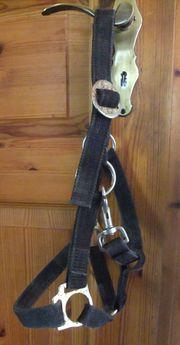 Ponyhalfter Nylon schwarz