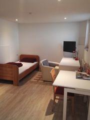 1 Zimmer Wohnung in Eimeldingen