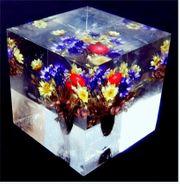 Briefbeschwerer aus Acrylglas - Mit eingegossenem
