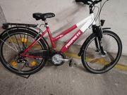 Fahrrad Prophete 26 Zoll Alu