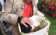 Bauernhof Senioren-WG für 2021 Bauernhaus