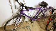 Gebrauchter Herrenrad Trecking