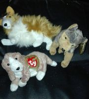 3x Plüschhund unbespielt Sammlerstücke