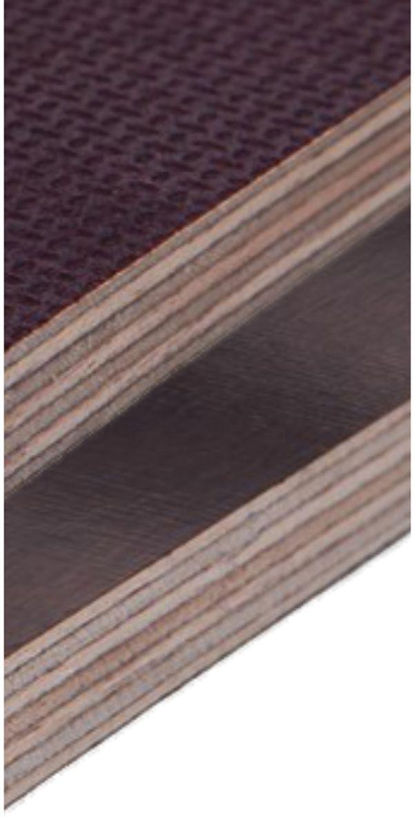 5 Fahrzeugbau- Siebdruckplatten 2 5x1