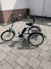 Dreirad E-Bike