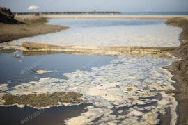 Stellenangebote - Nebenjob zu vergeben - Plastikmüll in Öl