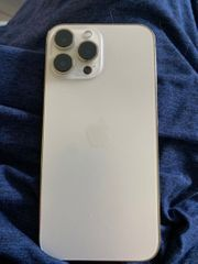 iPhone 13 Pro Max oder