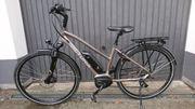 Wendiges schnelles E-Bike von Viktoria