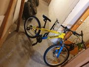 Kinder Fahrräder 24