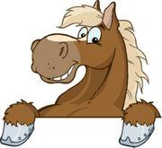 Ponyfreund gesucht