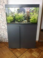 EHEIM Aquarium Komplett-Set mit viel