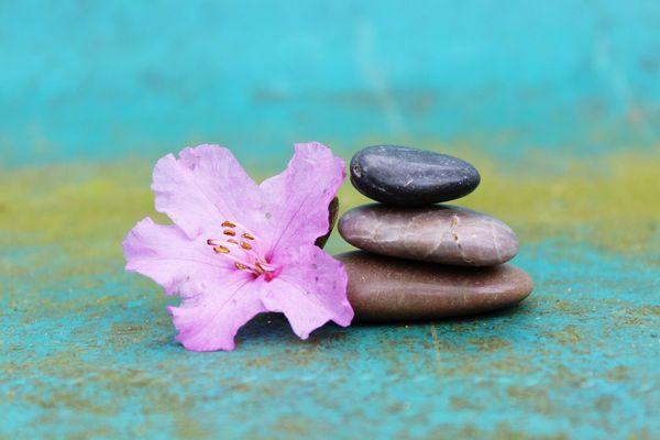Ausbildung zum Meditations-Lehrer