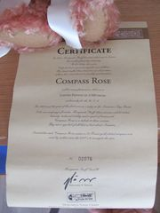 Steiff Teddybär Compass Rose 44