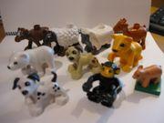 Lego Duplo 150 Tiere und