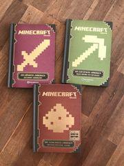 Minecraft Bücher