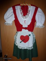 Faschings-Dirndl