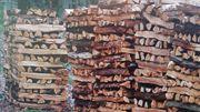 Weismain Trockenes Brennholz zu verkaufen
