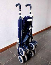 Zusammenklappbarer Kinder-Sportwagen Buggys Marke Peg