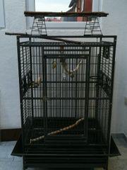 Papageienkäfig mit Freisitz Montana Cages