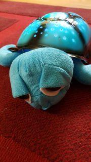 Kinder Sternenlicht Schildkröte Kinderspielzeug - Neuwertig