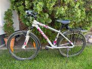 Fahrrad Scott 26 Zoll