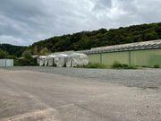 Freifläche mit 540 m² ab