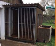 Hundezwinger mit isolierter Außenhütte