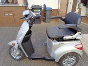 Seniorenfahrzeug E- Dreirad Luxxon mit